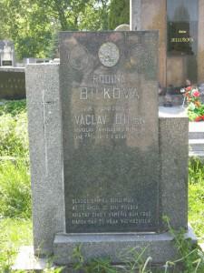 Řepín, ME, hřbitov, 2009-05-01  (4)